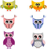 Owls Illustrations. Colorful owl illustrations on white background, purple owl, pink owl, yellow owl, green owl, blue owl,grey owl, birds, fauna Stock Photography