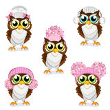 Owls in knitted hats set Stock Image
