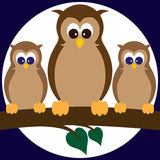 Owls on a Limb. Two young owls next to their parent on a limb in front of a full moon Royalty Free Stock Image