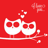 Owls in love Stock Photography