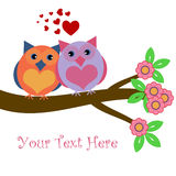 Owls in Love Sitting on Tree Branch. With Hearts and Flowers Illustration Stock Photography