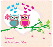 Owls in love , sweet card design. Stock Photography