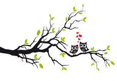 Owls in love on tree, vector. Cute owls in love sitting on green tree, vector illustration Stock Image