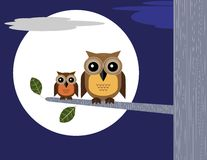 Owls and Moon Stock Photo
