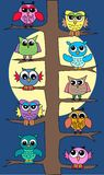 Owls in moonlight. Colorful owls sitting in a tree in moonlight Royalty Free Stock Image