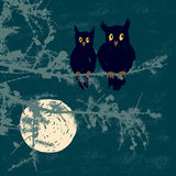 Owls in the moonlight night. Vector image of the owls on the fir branch in the night forest Royalty Free Stock Photography