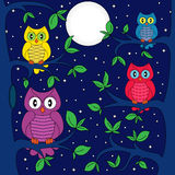 Owls in a moonlit night. Owls sitting on a tree in a moonlight night, hand drawing cartoon vector illustration Stock Images
