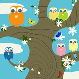 Owls nest. Creative background for springtime with cute owls and butterflies Stock Photography