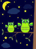 Owls in the night. Owls in the night ,cartoon Stock Images