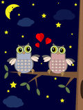 Owls in the night. Royalty Free Stock Photography