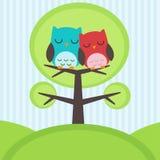 owls på tree Arkivbilder