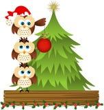 Owls placing glass ball on Christmas tree Stock Images