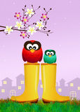 Owls on rain boots Royalty Free Stock Photos