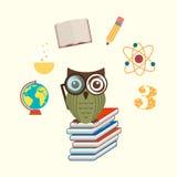 Owls school Stock Photography