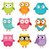 Owls set. Cute cartoon owls, colorful set Royalty Free Stock Image