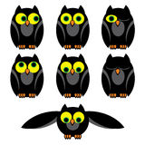 Owls set Stock Photos