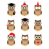 Owls set Stock Photography