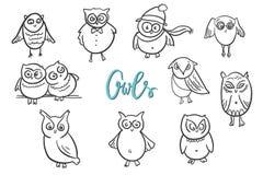 Owls set. Doodle hand drawn vector illustration