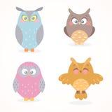 Owls set Stock Photos