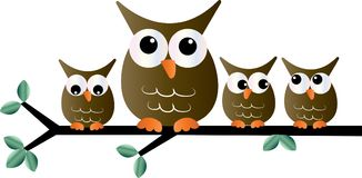 Owls sitting on a branch header or banner Royalty Free Stock Photos