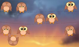 Owls sitting on power lines against stormy sky Royalty Free Stock Photos