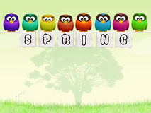 Owls in spring Stock Photography