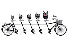 Owls on tandem bicycle, vector Royalty Free Stock Photos