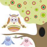 Owls. Three colorful abstract owl in a beautiful tree with a hollow Royalty Free Stock Image