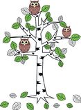 Owls in a tree. Three brown owls sitting in a tree stock illustration