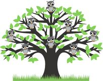 Owls in a tree. Illustration of a group of owls sitting in a tree Royalty Free Stock Photos