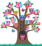 Owls in a tree. Lot of colourful owls sitting in a tree