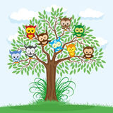 Owls on the tree. Owls on the tree on a blue background stock illustration