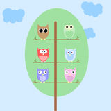 Owls on a tree. Funny vector background with cartoon owls on tree Stock Images