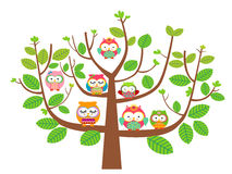 Owls and tree Royalty Free Stock Images