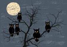 Owls on a tree. Vector drawing of the owls on a tree in a moonlit night stock illustration