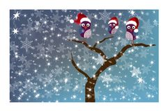 Owls on a tree in winter setting Royalty Free Stock Photography
