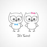 Owls Twins Royalty Free Stock Image