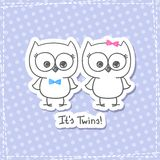 Owls twins Royalty Free Stock Photos