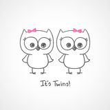 Owls twins Stock Image