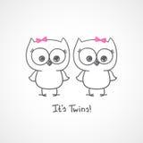 Owls twins Stock Image