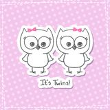 Owls twins Royalty Free Stock Photography