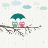 Owls under umbrella. Romantic card Stock Photography