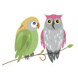 Owls. Vector illustration background with two owls in spring Stock Photography