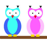 Owls on white background Stock Image