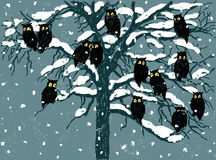 Owls in a winter day Royalty Free Stock Image