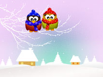 Owls in winter Royalty Free Stock Photography