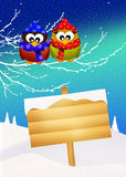 Owls in winter Royalty Free Stock Photo