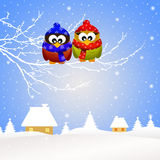 Owls in winter Royalty Free Stock Photos