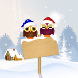 Owls in winter landscape Stock Images
