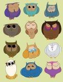 Owlset Imágenes de archivo libres de regalías